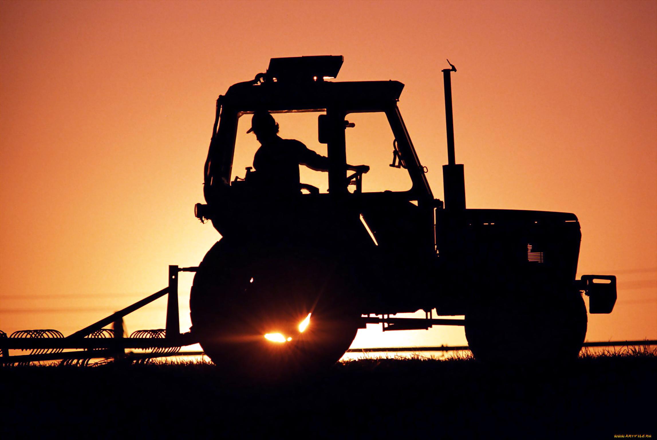 техника, тракторы, трактор, закат, борона, тракторист, силуэты